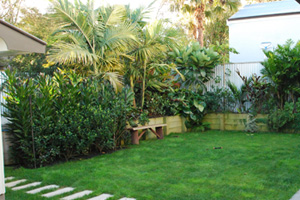 subtropical planting with spar bath screened by cordyline