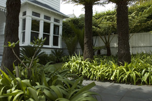 Garden Design Auckland By Accredited Member Landscaping